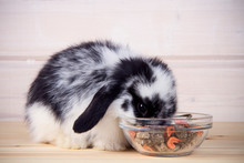 Little Rabbit Eating Food On A Wooden Background