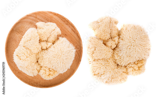 Fotomural lion mane mushroom isolated on white background