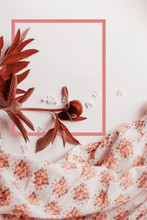 Creative Layout Made Of Peony Flowering A With A Pink Drawn Frame. Natural Concept In Tender Living Coral Colour. Color Of The Year 2019.