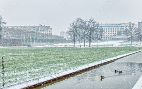 Ducks swiming in a canal of Parc Andre Citroen during a snowfall - Paris, France Canvas Print