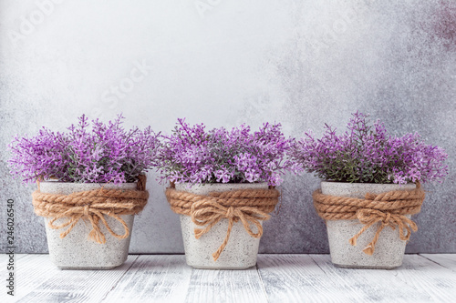 Photo sur Toile Fleuriste Small purple flowers in gray ceramic pots on stone background Rustic style Copy space