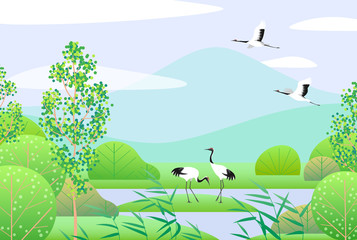 Fototapeta Japoński Simple Spring Lanscape with Japanese Cranes