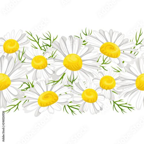 Fototapeta Daisies flowers horizontal seamless pattern