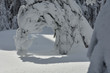 Ciężki śnieg