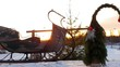 santa claus with christmas sled and christmas tree, camera slider