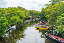 Colorful Old Fishing Boats Docked Along The River In Negril, Jamaica. Caribbean Countryside Landscape.