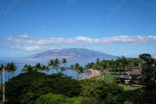 Papiers peints Scandinavie View towards Mt Haleakala on Maui with palm tree