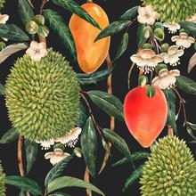 Watercolor Durian Tropical Vec...
