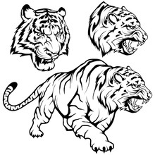 Tiger Set Suitable As Logo Or Team Mascot, Tiger Drawing Sketch In Full Growth, Crouching Tiger In Black And White, Vector Graphics To Design