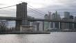 Amazing view over the skyline of Manhattan with Brooklyn Bridge
