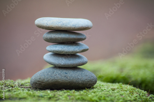 Cadres-photo bureau Zen pierres a sable Closeup of stone balance on moss in the forest