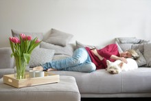 Bouquet Of Tulips And In The Background A Sleeping Woman With A White Dog