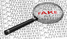 Document Verification, Searching For Fraudulent Informations