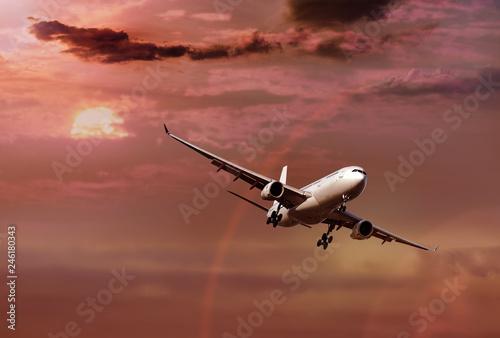 Fotografie, Obraz  Jet aircraft in flight