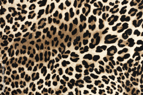 Poster Luipaard Leopard fablic texture. Fashion textile background.