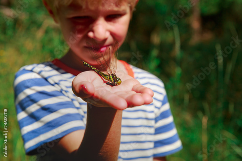 kids learning insects - little boy holding dragonfly