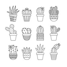 Cute Cactus Set, Different Typ...