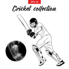 Vector Engraved Style Illustration For Logo, Emblem, Label Or Poster. Hand Drawn Sketch Set Of Cricket Elements Isolated On White Background. Detailed Vintage Doodle Drawing.