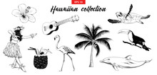 Vector Engraved Style Illustration For Logo, Emblem, Label Or Poster. Hand Drawn Sketch Set Of Hawaiian Girl, Ukulele Guitar, Etc. Isolated On White Background. Detailed Vintage Doodle Drawing.