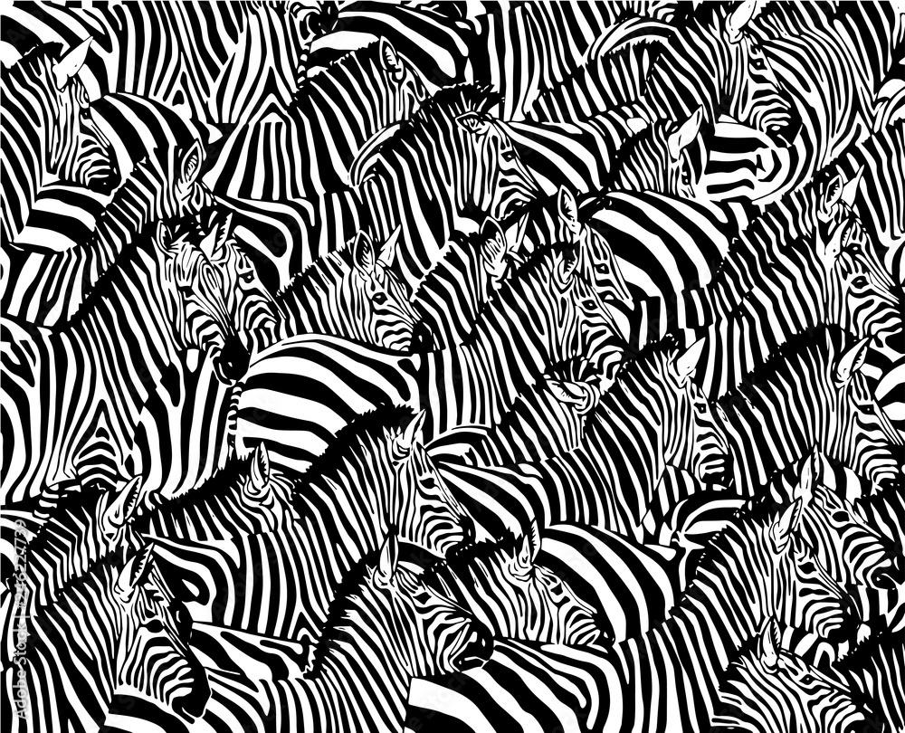 Obraz Graphical abstract illustration, zebra pattern, modern design cover, vector illustration fototapeta, plakat