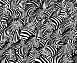 Fototapeta Zebra - Graphical abstract illustration, zebra pattern, modern design cover, vector illustration