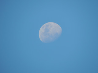 Beautiful white moon on the blue sky.