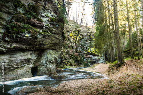Fotografie, Obraz  Zidova strouha - stream in Czech Republic.