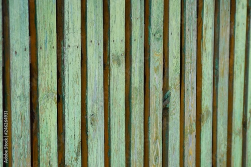 green wooden texture from thin old wall fence boards - Buy