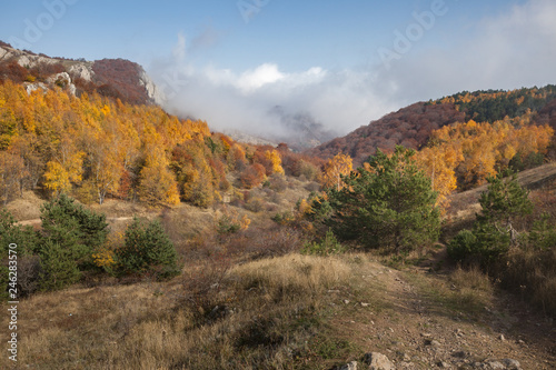 Printed kitchen splashbacks River Autumn landscape in the mountains