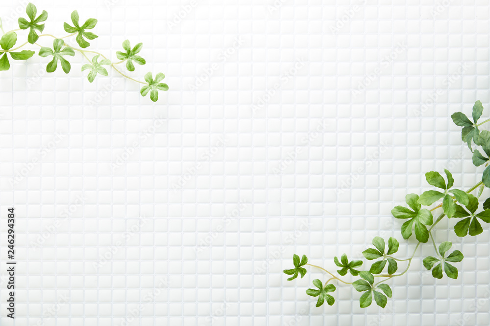 Fototapety, obrazy: モザイクタイル-白-植物-真俯瞰
