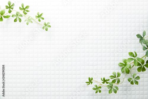 Fotografering モザイクタイル-白-植物-真俯瞰
