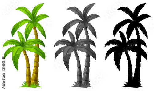 La pose en embrasure Jeunes enfants Set of palm tree