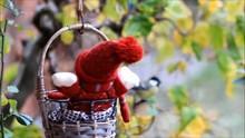 Feeding Birds Outside Winter Fodder Basket With A Winter Doll