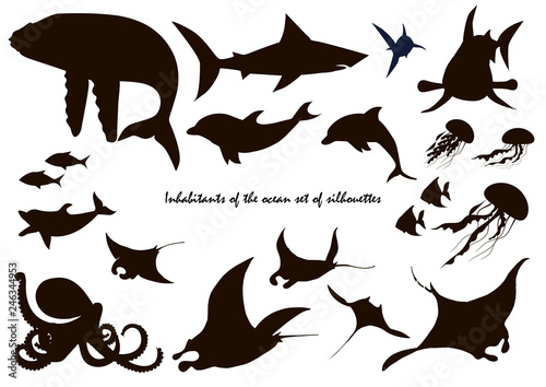 Photo  Fish and marine animals silhouettes, sea waves, dolphins, sharks, whale and octo