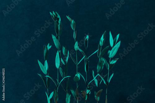 Fotografía  Artificial foliage decor