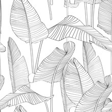 Beautiful Palm Tree Leaf Silhouette Seamless Pattern Background Illustration EPS10. Black Lines On White Background.