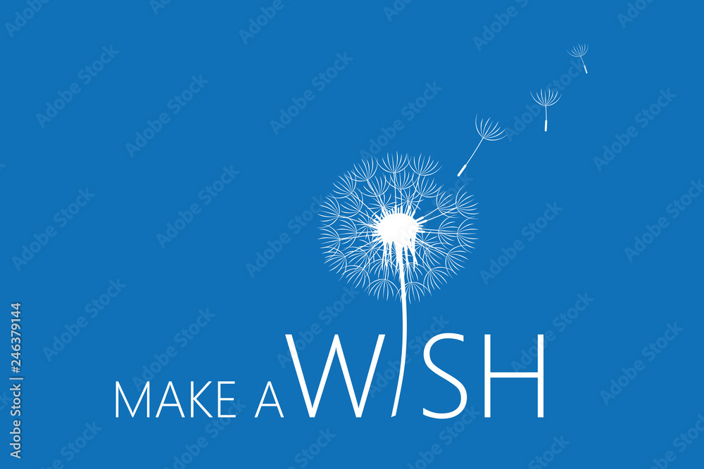 Fototapety, obrazy: make a wish typography with dandelion vector illustration EPS10