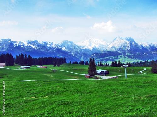 Foto op Plexiglas Groene Alpine pastures and meadows on the slopes of Churfirsten mountain range - Canton of St. Gallen, Switzerland
