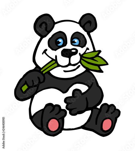 Wall Murals Bears Panda teddy bear sitting and eating eucalyptus leaves