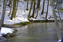 Bend In The Stream