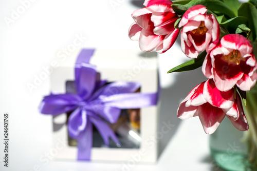 Foto  tulips on white background