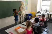 Side View Of Schoolboy Explaining Human Skeleton Model In