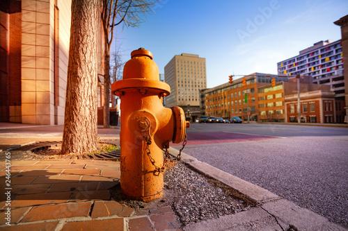 Fotobehang Amerikaanse Plekken Fire hydrant on sidewalk of Baltimore city, USA