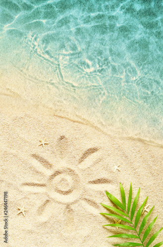 Tropical background. Palm tree branche with starfish on sandy background and sea. Travel.