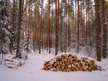 A Wood Stack Covered With Snow...