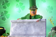 Leprechaun For St Patricks Day...