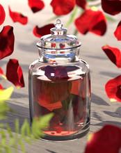 Obrazy Dla Rose Oil - Aromatherapy