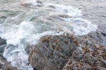 Water Foam And A Stone Covered By Algae In La Push Beach Area, La Push, WA