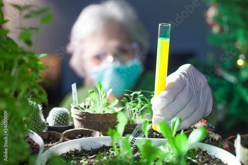 Fotografia  woman chemist experimenting with chemicals and plants holding a test tube with y