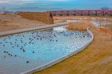 Bridge Over Lake With Ducks In Daybreak Utah
